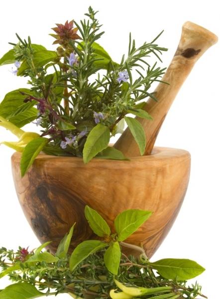 drainer son corps avec des plantes