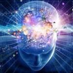 8 nutriments essentiels à votre cerveau